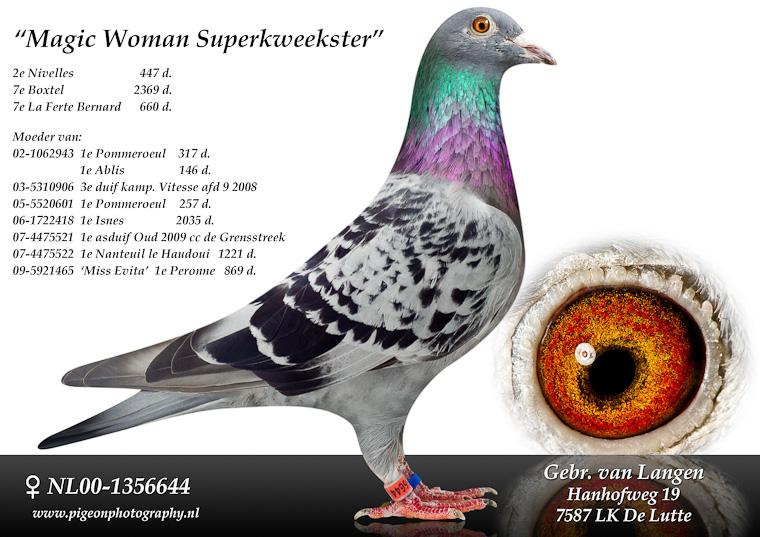 nl00-1356644