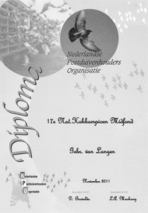 diploma-npo-2011