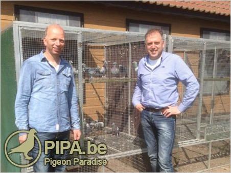 pipa_2015_1